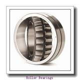 PCI CIR-4.00-1  Roller Bearings